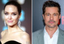 "Brad Pitt and Angelina Jolie ""Reaffirm"" Their ""Shared Commitment"" to French Estate with New Wine"