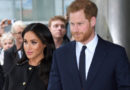 Meghan Markle and Prince Harry Might Be Moving to Africa