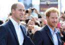 """Prince Harry and Prince William """"Are Both Alphas and Raised to Be Leaders"""""""