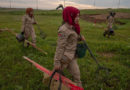 Women After War We Want to Rebuild Our Lives