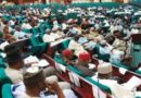 House Of Reps Is An Unnecessary Burden; Let's Do Away With It By Fredrick Nwabufo