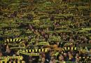 Dortmund Fans Donate 70,000 Euros To Bars, Restaurants