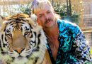 How Early Is Too Early to Pick Out My Joe Exotic Halloween Costume?