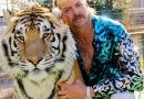 Joe Exotic, Carole Baskin, Doc Antle and More Respond to <i>Tiger King</i>