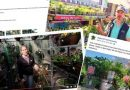 Coronavirus: Garden centres switch to virtual personal shopping