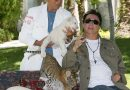 A Follow-Up <i>Tiger King</i> Episode Focused on the Infamous Siegfried & Roy Attack Is Coming