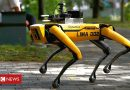 Coronavirus: Robot dog enforces social distancing in Singapore park