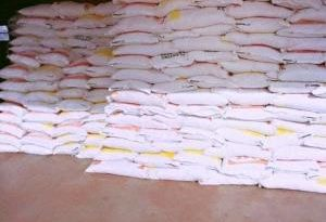 Hajia Abibata Surprises Yendi Farmers With 1,800 Fertilizers, 600 Knapsack sprayers, 5,400 bags of Maize Seeds
