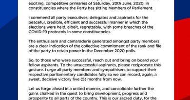 NPP Primaries: Enthusiasm Shown Indicates NPP's Readiness To Retain Power – Akufo-Addo