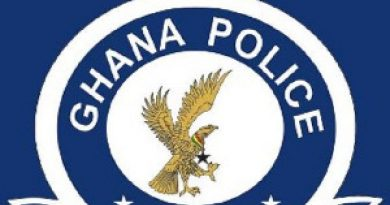 NPP Primaries: Police Harass, Arrest Journalist For Taking Pictures In Tema East