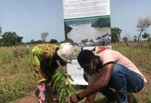 EU/German Development Cooperation-REACH Project Plants 22,000 Seedlings