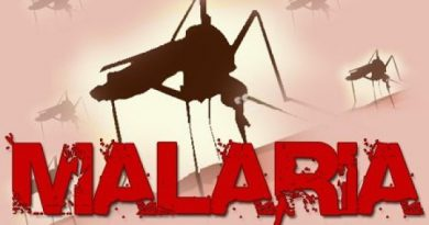 Ghana Sustains Gains In Malaria Prevention