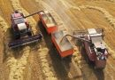 Climate change: Removing CO2 could spark big rise in food prices