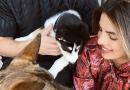 Priyanka Chopra and Nick Jonas Just Expanded Their Family With New Rescue Dog Panda