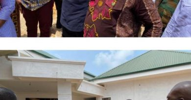 W/R: Nzemaland Hosts Akufo Addo As New Traditional Council Office Nears Finishing