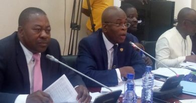 Fight At PAC Sitting Over GNPC Financial Allocation To Rebecca Foundation, Okyenhene