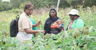 IITA-Care Study: Rural Female Farmers Contribute More To Local Economy In Cameroon