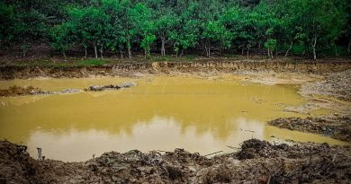 Amenfi Central: Farmers Weep As Galamsey Activities Continue To Destroy Cocoa Farms