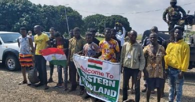 Order National Security, Defence And Interior Ministries To Show More Commitment — STRANEK-Africa To Akufo-Addo