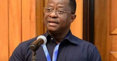 Gov't Releases $130 million To ECG For Efficient Power Supply — Minister