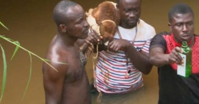 Chiefs invoke curses on galamsey operators