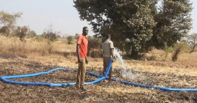 Dry season farmers along White Volta appeal for gov't support