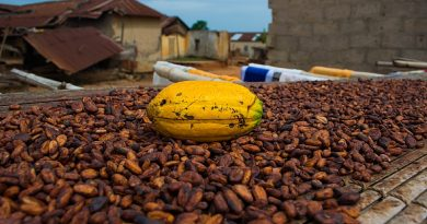 Public, Private and Civil Society Organizations launch ASASE Project in Ghana to Support Climate-Smart Cocoa and Thriving Forests