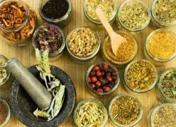 Study reveals Ghanaian traditional medicines show promising results against tropical diseases