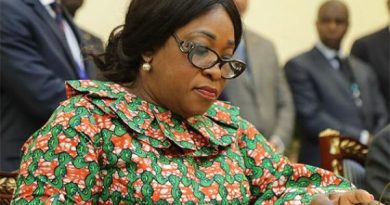 Pillars holding Accra Conference Centre very weak — Ayorkor Botchwey