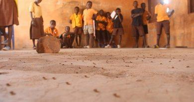 Tempane: Strange insects chase away pupils of Karateshie primary school