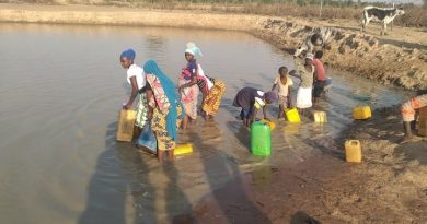 Tolon: Chief, Residents lament sharing water with animals at Gburimani