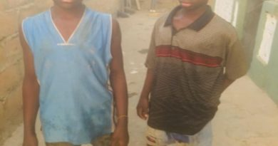 Wa: How 13- year-old twin brothers who never saw their father dropped out of school to sell yam