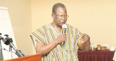Akufo-Addo should have asked Domelovo to stay – Vitus Azeem