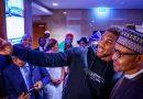 President Buhari celebrates Anthony Joshua's victory [ARTICLE] – Pulse Nigeria