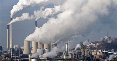 IEA roadmap for clean power shines light on EU's addiction to gas