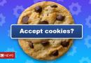 Privacy group targets website 'cookie terror'