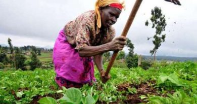 U.S. Ambassador Launches $19 Million activity to boost Agriculture Finance in Ghana