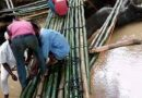 ENUGU STATE: Nkanu East Community Resorts To Bamboo Bridges, As Government Neglect Hits Harder By Ifeanyi Ozoani