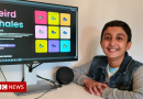 Twelve-year-old boy makes £290,000 from whale NFTs