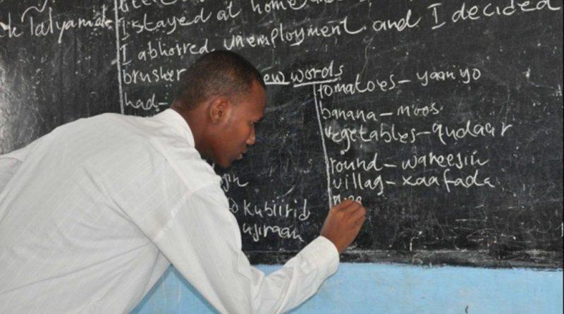 206 teachers from Edo, Delta states get NPDC/SEPLAT training – Vanguard